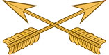 Special Forces Collar Insignia