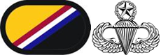 Master Parachutist Badge with background trimming